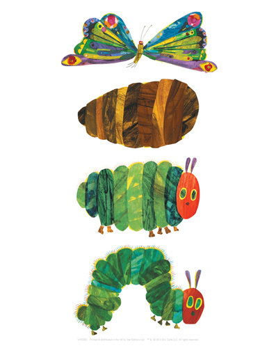 illustrationen eric carle raupe nimmersatt poster. Black Bedroom Furniture Sets. Home Design Ideas