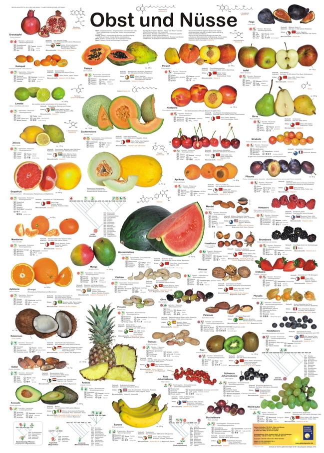 Obst und n sse poster im kinderpostershop und posterladen - Obst und gemuseplatte fur kindergarten ...