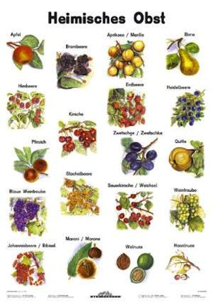 Native fruits