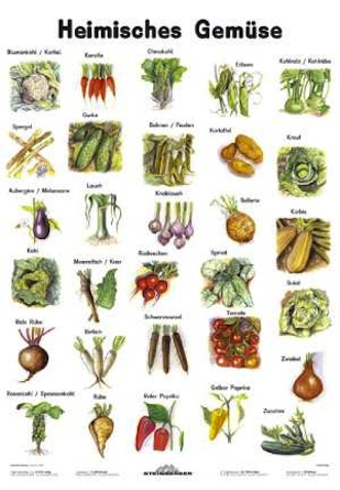 Native vegetables