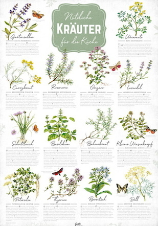Culinary and medicinial herbs poster