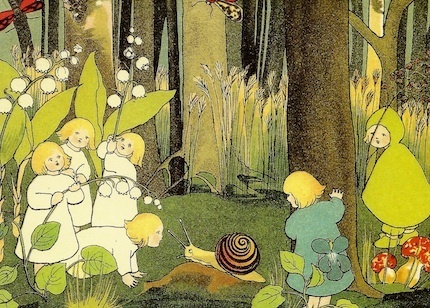 Root children in the forest