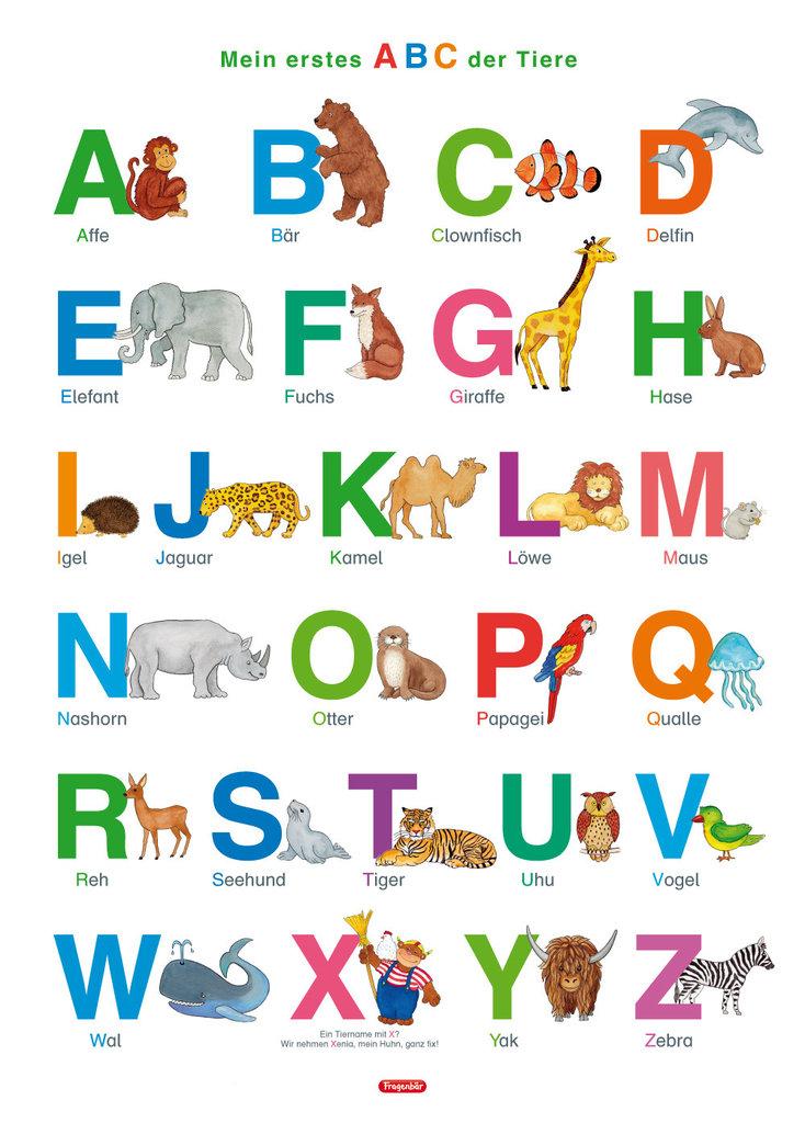 Tiere Mit X