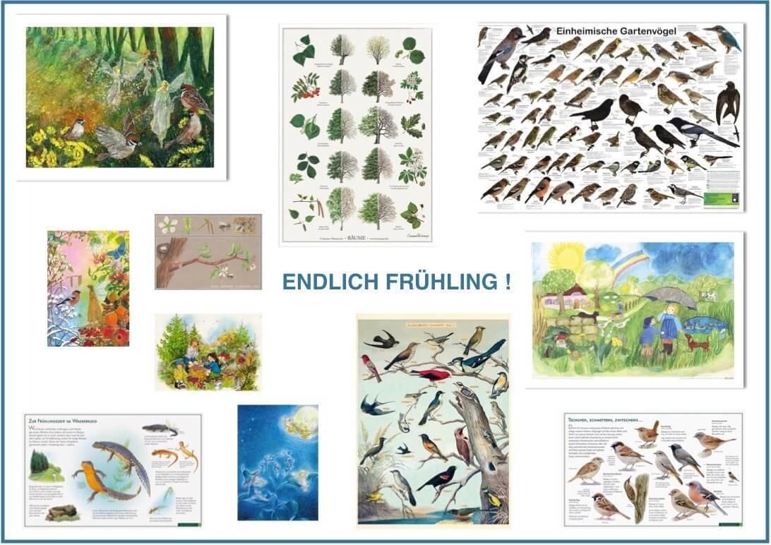 e3ebc2daf039be Kinderposter und Postkarten online kaufen im Kinderpostershop